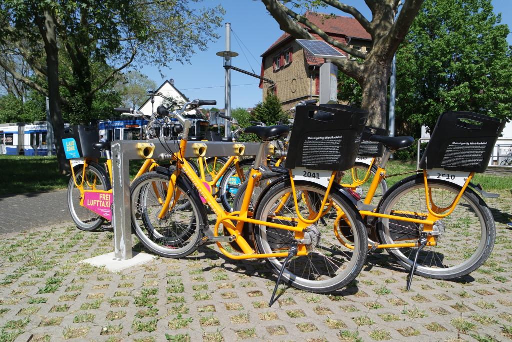 Foto © Stefanie Jung    Best-of-Mainz.com