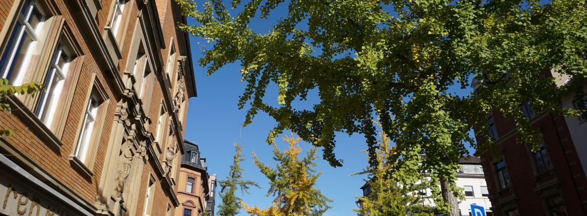 Best of Mainz Von der Neu- in die Altstadt Stadttour Stefanie Jung